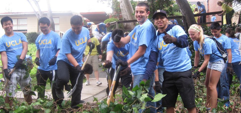 Volunteer Ucla Sustainability
