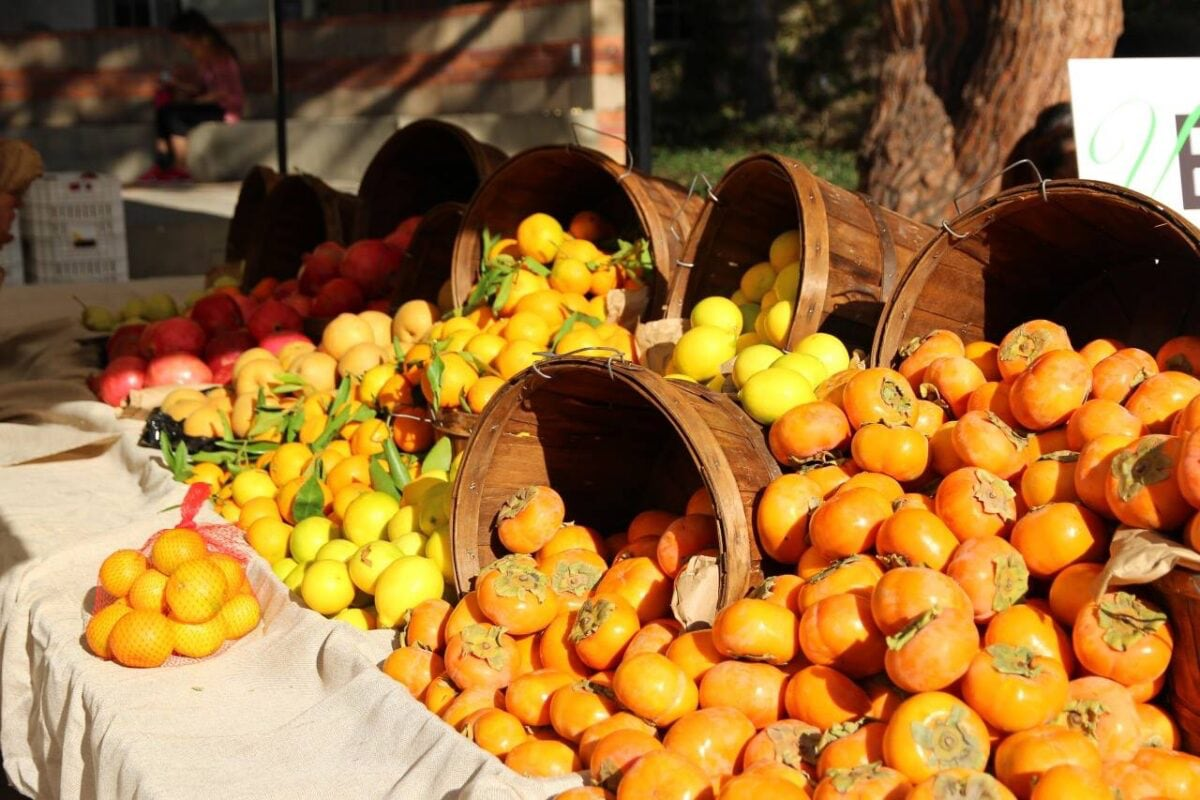 Fruit stand at farmer's market