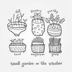 small-garden-on-the-window_156929429